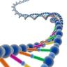Genetics Picture